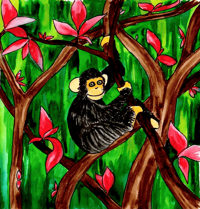 Monkey in tree drawing