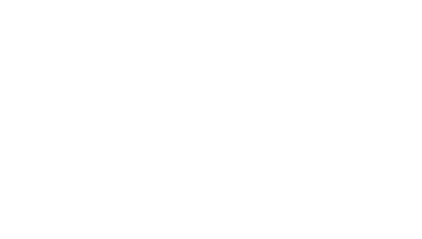 Paid Media Campaigns